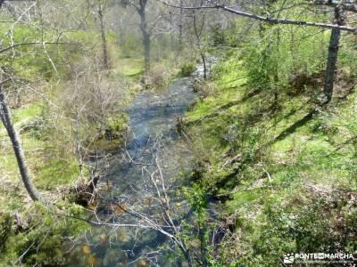 Cascadas del Aljibe - Arquitectura Negra;bosque de irati la bola del mundo los ancares monasterio de